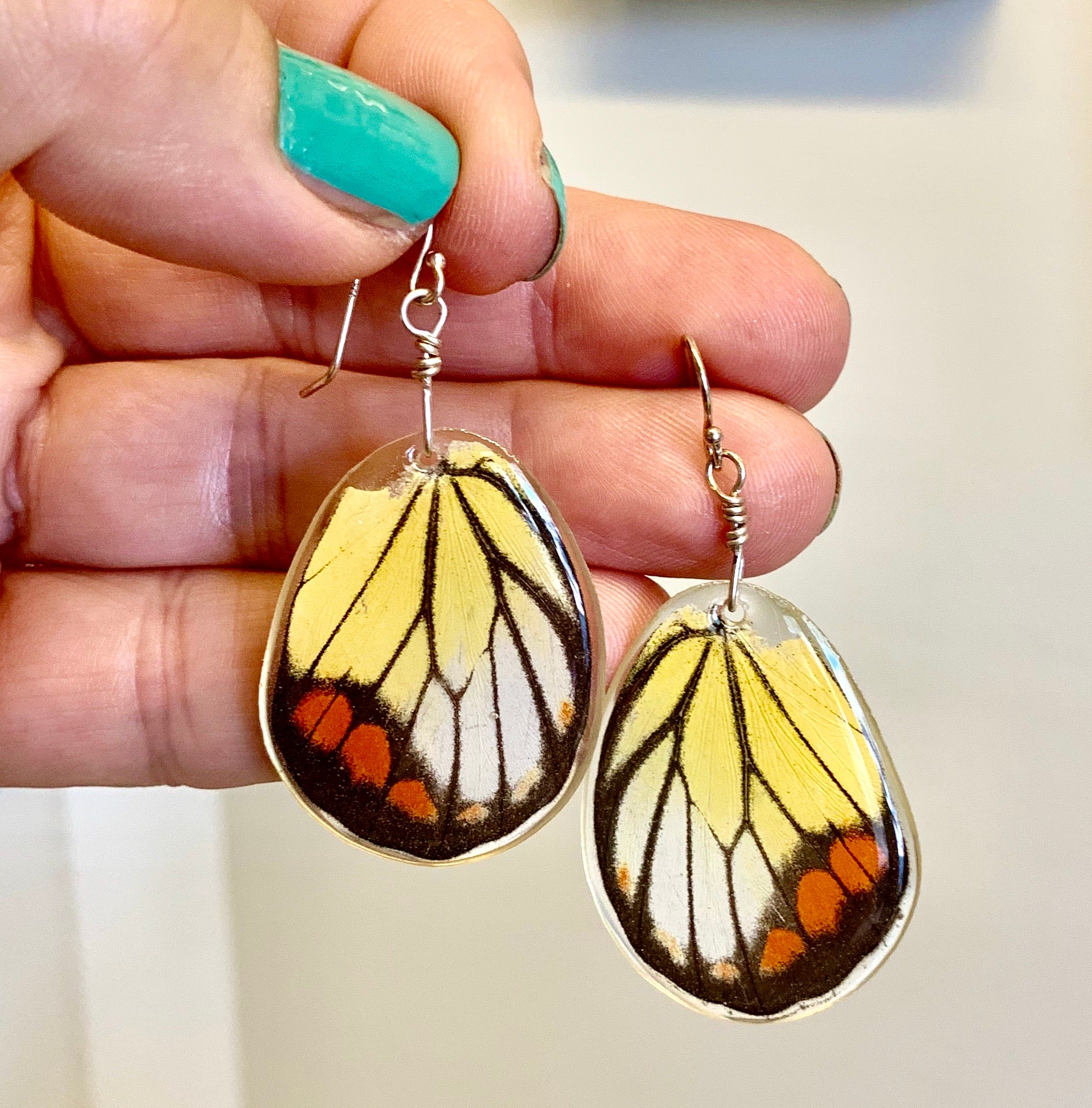"""Painted Jezebel"" Butterfly Wing Earrings"