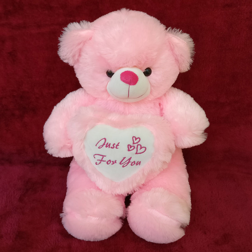 Adorable Pink Teddy 20 Inch