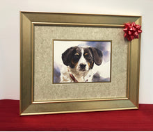 Load image into Gallery viewer, Pet Portraits by John