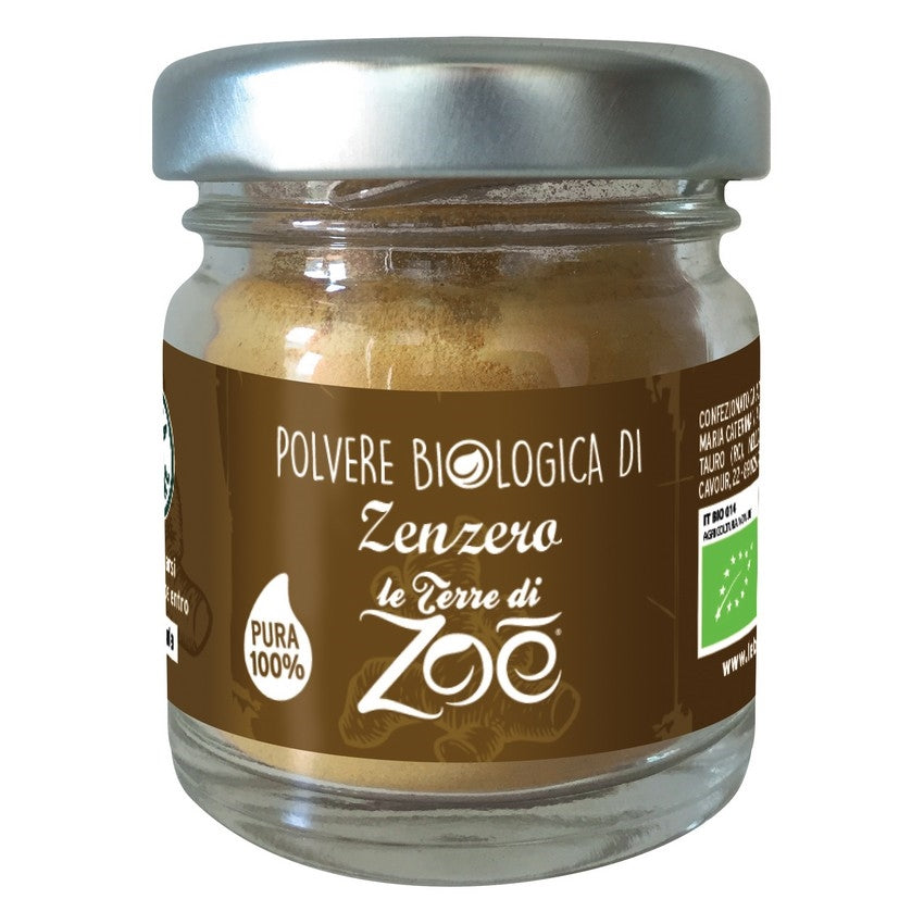 Organic Ginger Powder 15gr