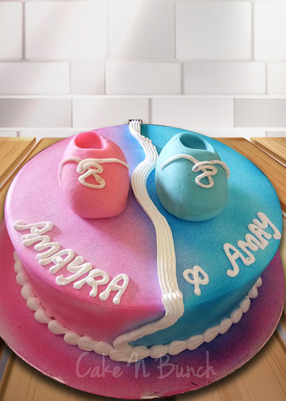 Twin Color Cake