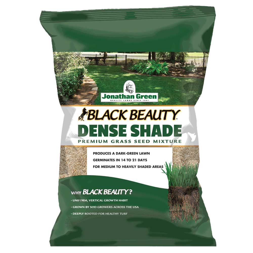 Jonathan Green Black Beauty® Dense Shade Grass Seed