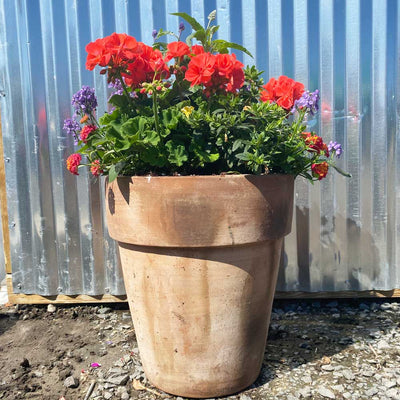 Seasonal Flowers Rustic Clay Planter