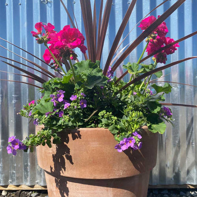 Flowers Rustic Clay Planter