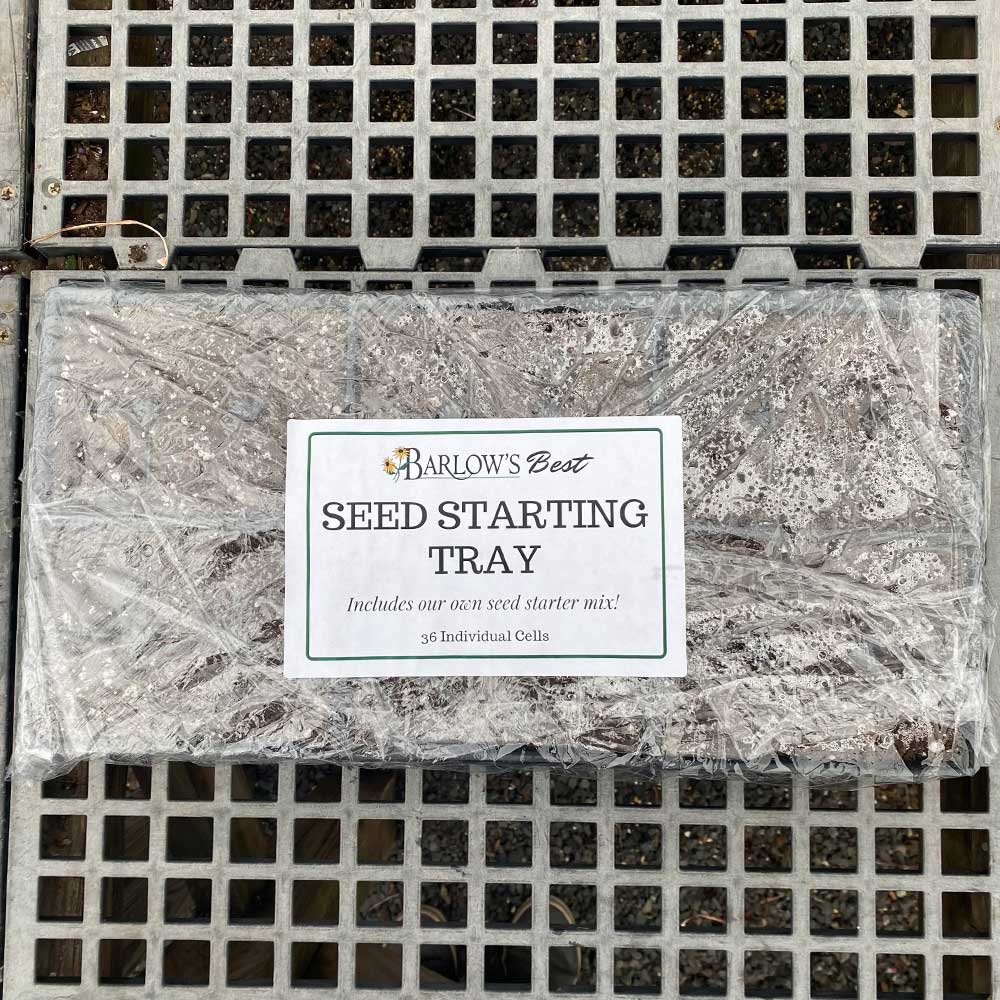 Seed Starting Tray