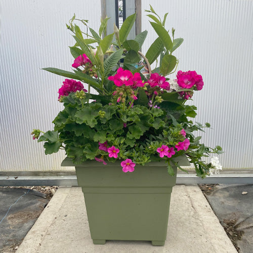 Seasonal Patio Square Planter