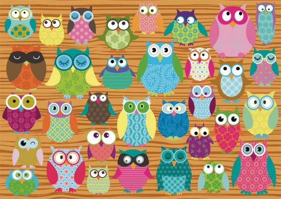 Owl Collage (500pc)