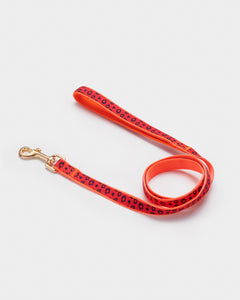 Fluro Animal Print Dog Lead