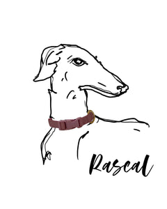 Rose Gold Metallic Dog Collar