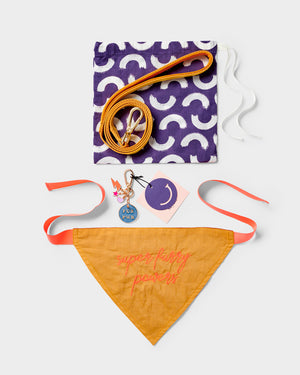Super Furry Powers Dog Gift Set