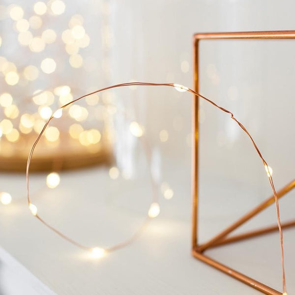 Micro 20 Led Warm White Fairy Lights On Copper Wire