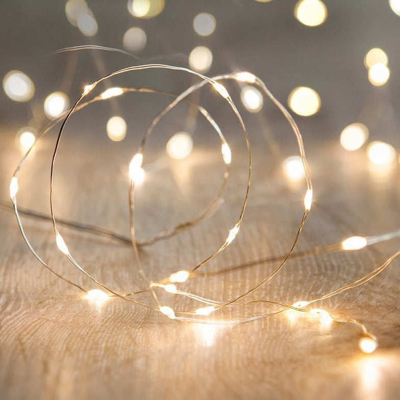 Micro 20 Led Warm White Fairy Lights On Silver Wire
