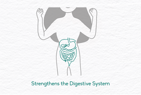 Ghee strengthens the digestive system