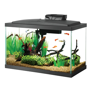 Aqueon LED 10 Gallon Aquarium Kit