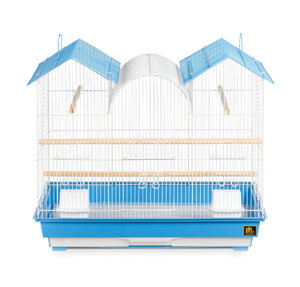 Large House Bird Cage