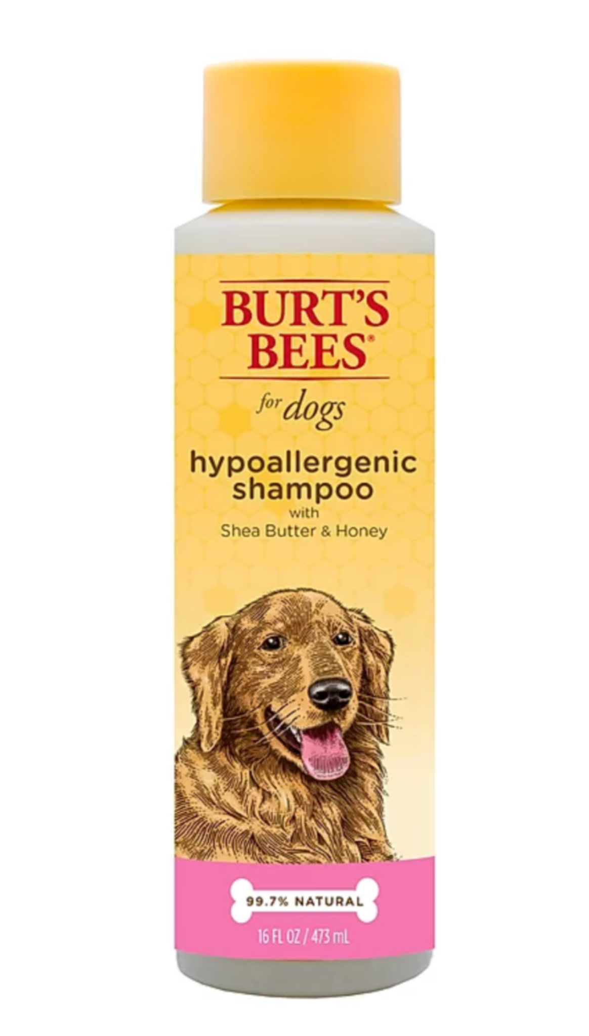 Burt's Bees Hypoallergenic Shampoo With Shea Butter & Honey