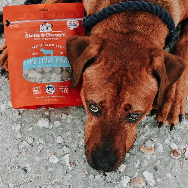 Stella & Chewy's Lamb Liver Treats Freeze-Dried Raw