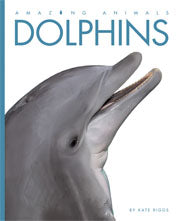 Dolphins © 2011
