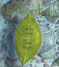 The Riverbank © 2009