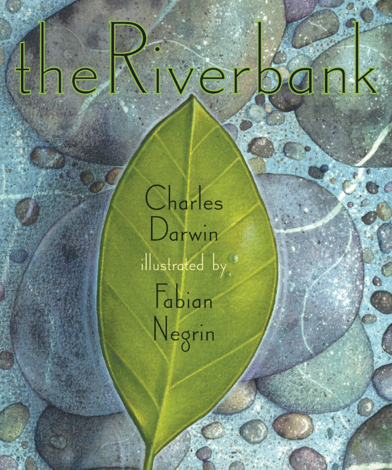 Riverbank, The