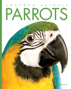 Amazing Animals: Parrots