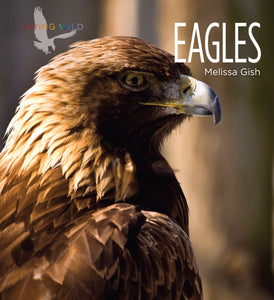 Living Wild: Eagles