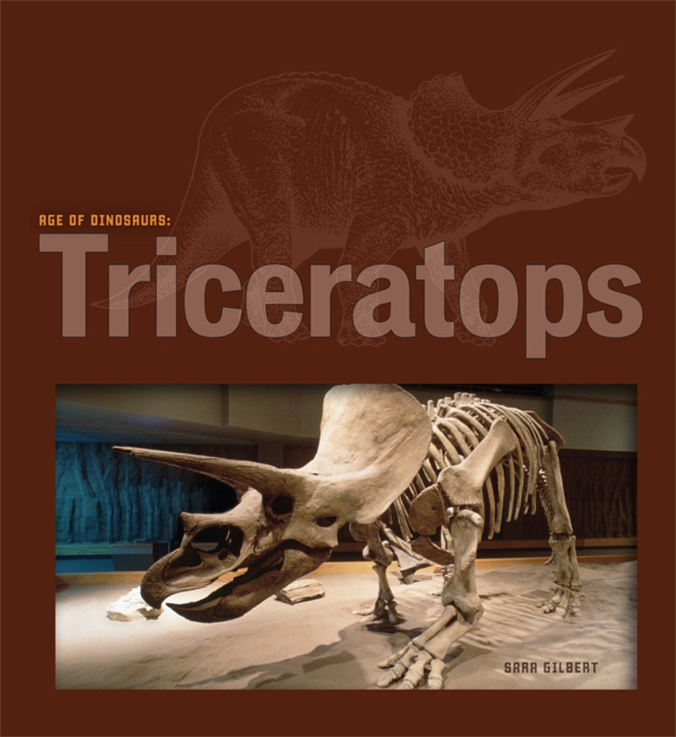 Age of Dinosaurs: Triceratops