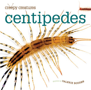 Creepy Creatures: Centipedes