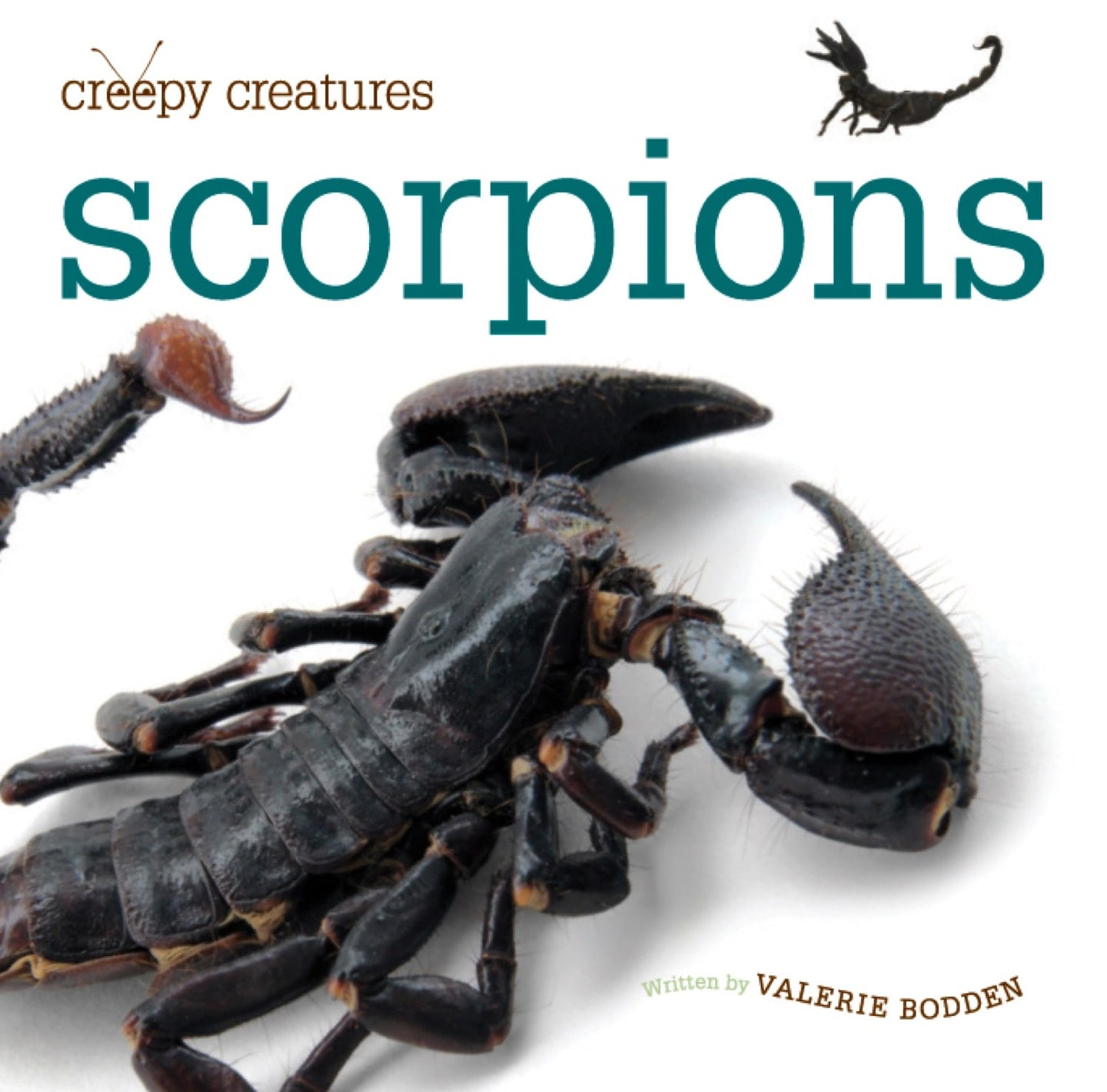 Creepy Creatures: Scorpions