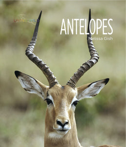 Living Wild: Antelopes