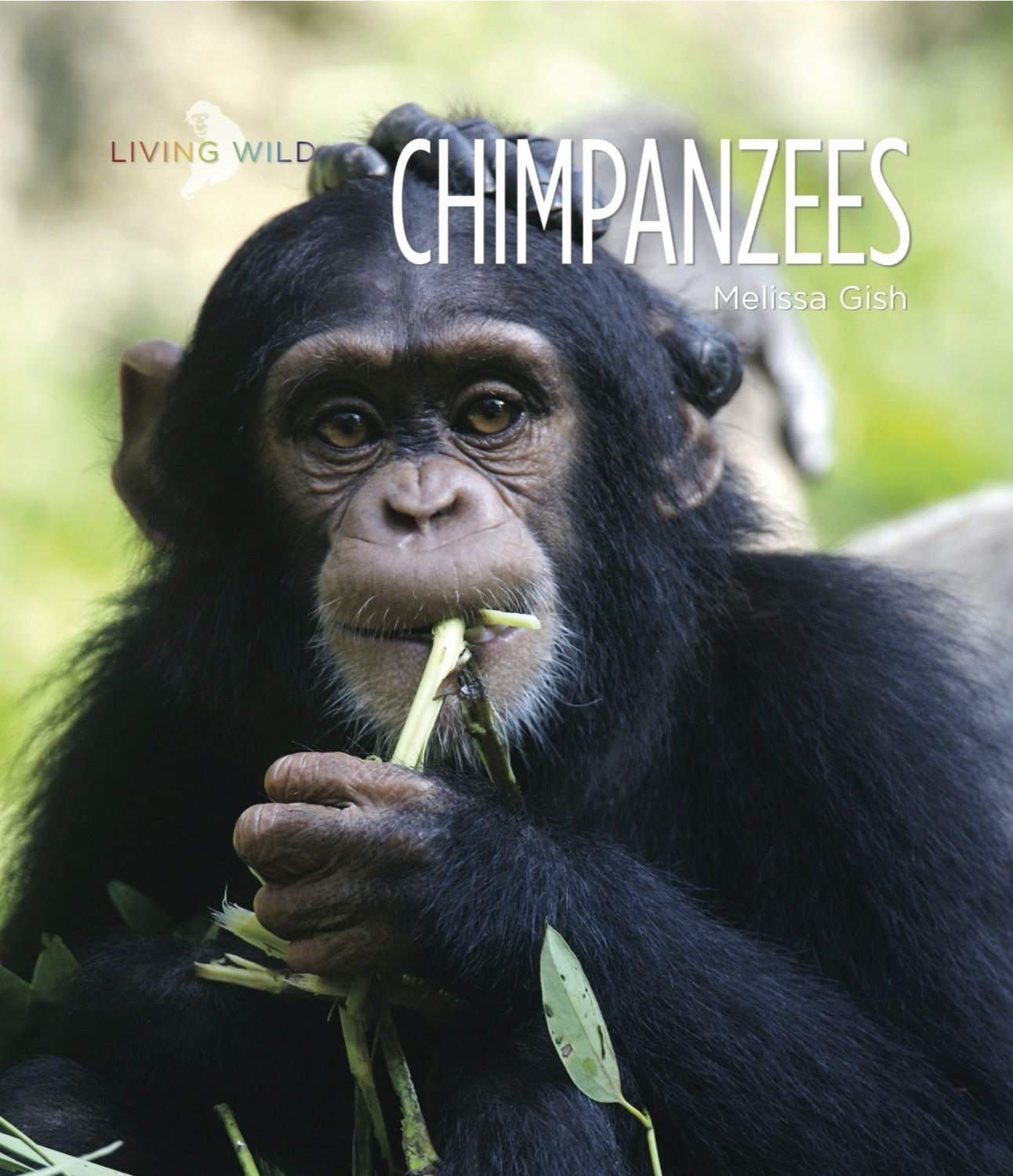Living Wild: Chimpanzees