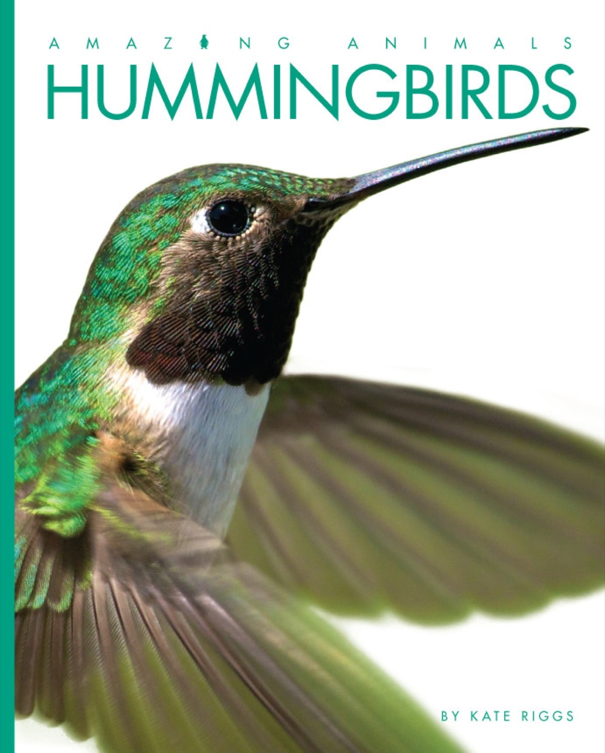 Amazing Animals: Hummingbirds