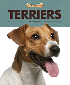Fetch!: Terriers