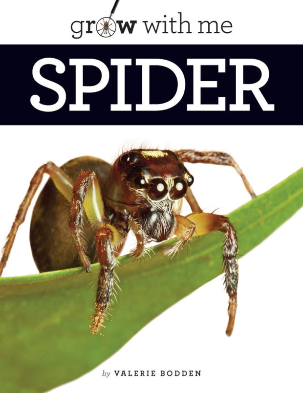 Grow with Me: Spider 1