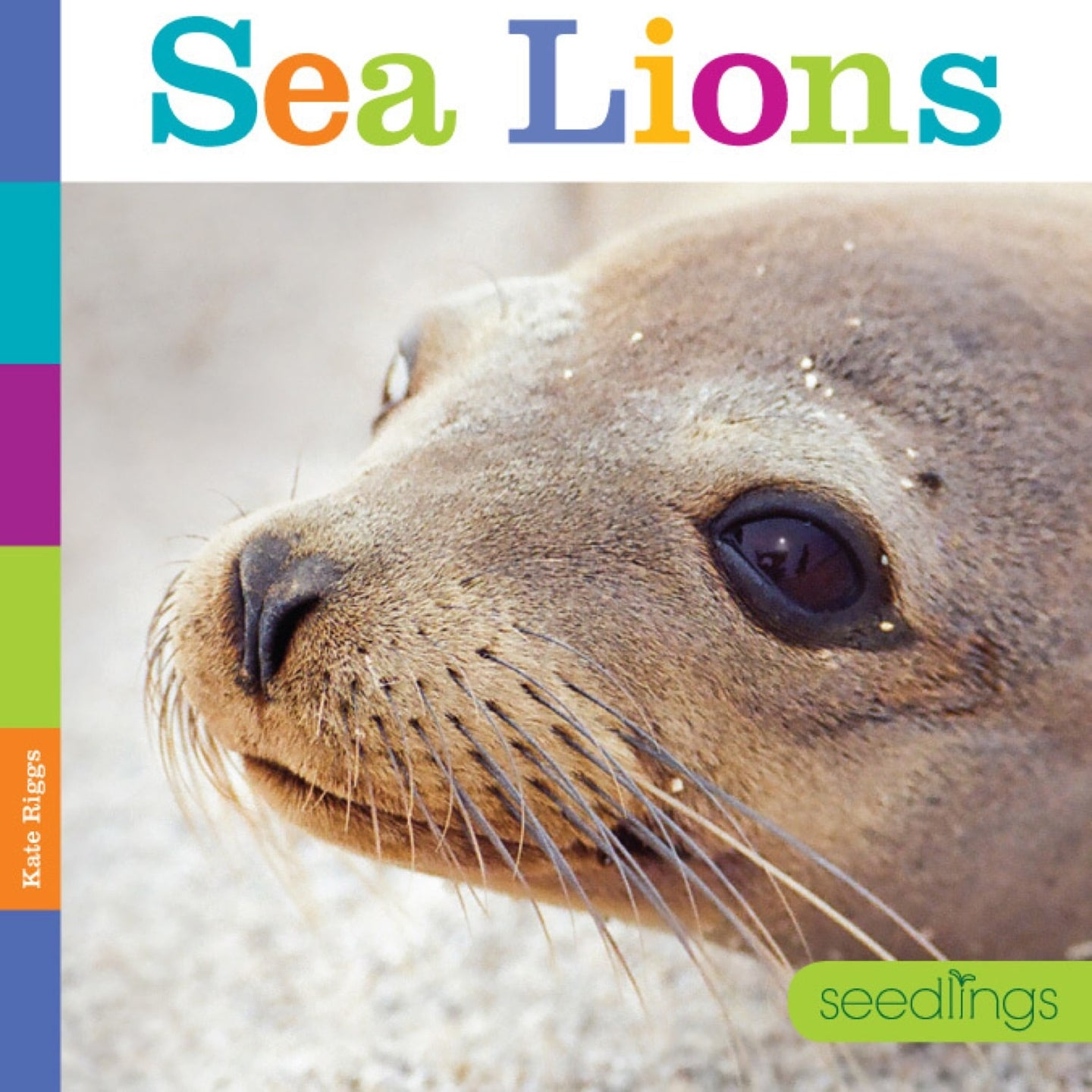 Seedlings: Sea Lions