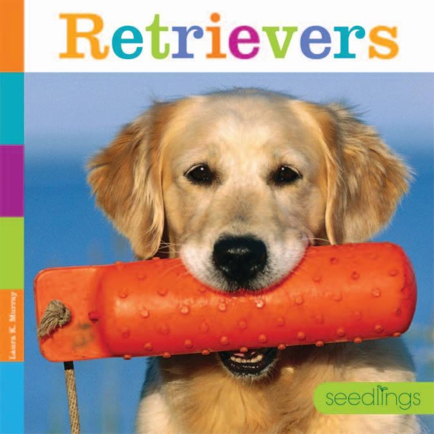 Seedlings: Retrievers