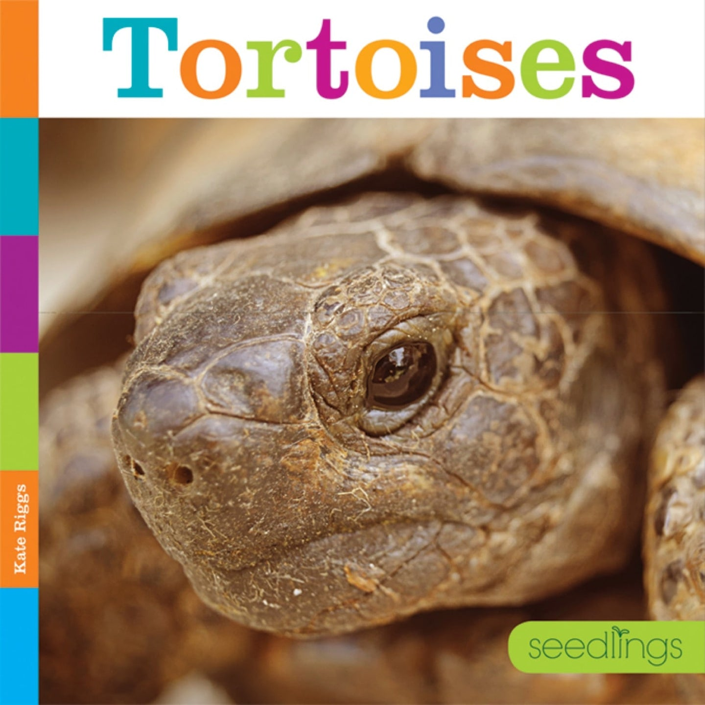 Seedlings: Tortoises