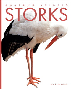Amazing Animals: Storks