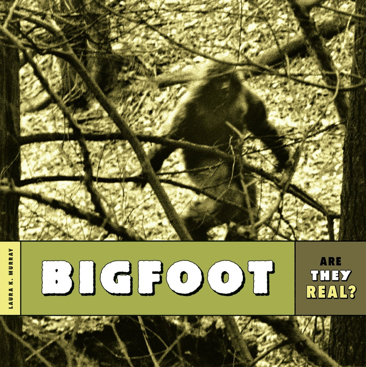 Are They Real?: Bigfoot