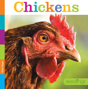 Seedlings: Chickens
