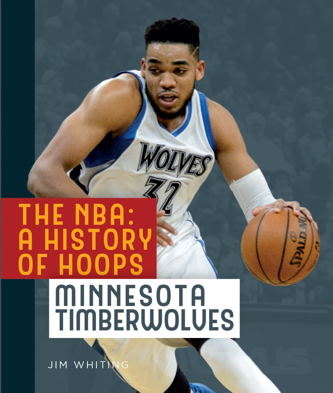 The NBA: A History of Hoops: Minnesota Timberwolves