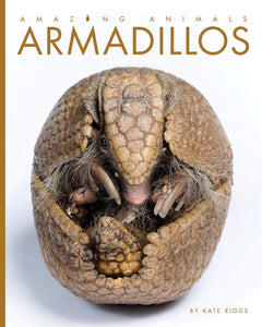 Amazing Animals: Armadillos