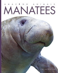 Amazing Animals: Manatees