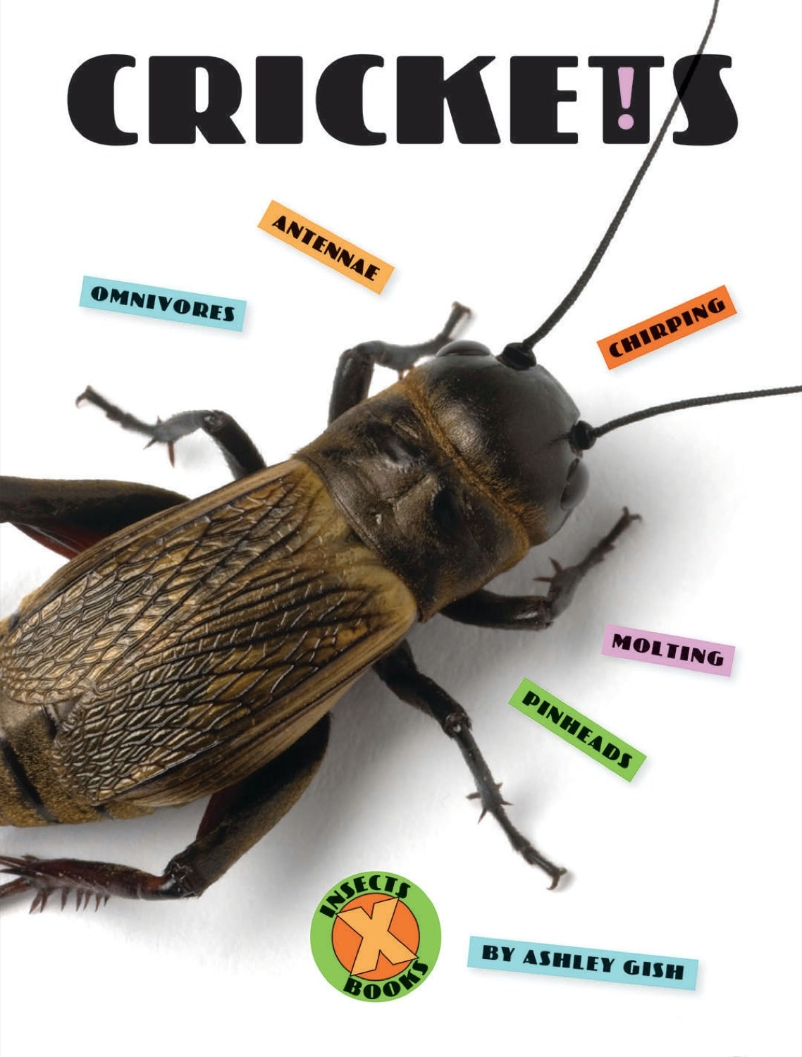 X-Books: Insects: Crickets