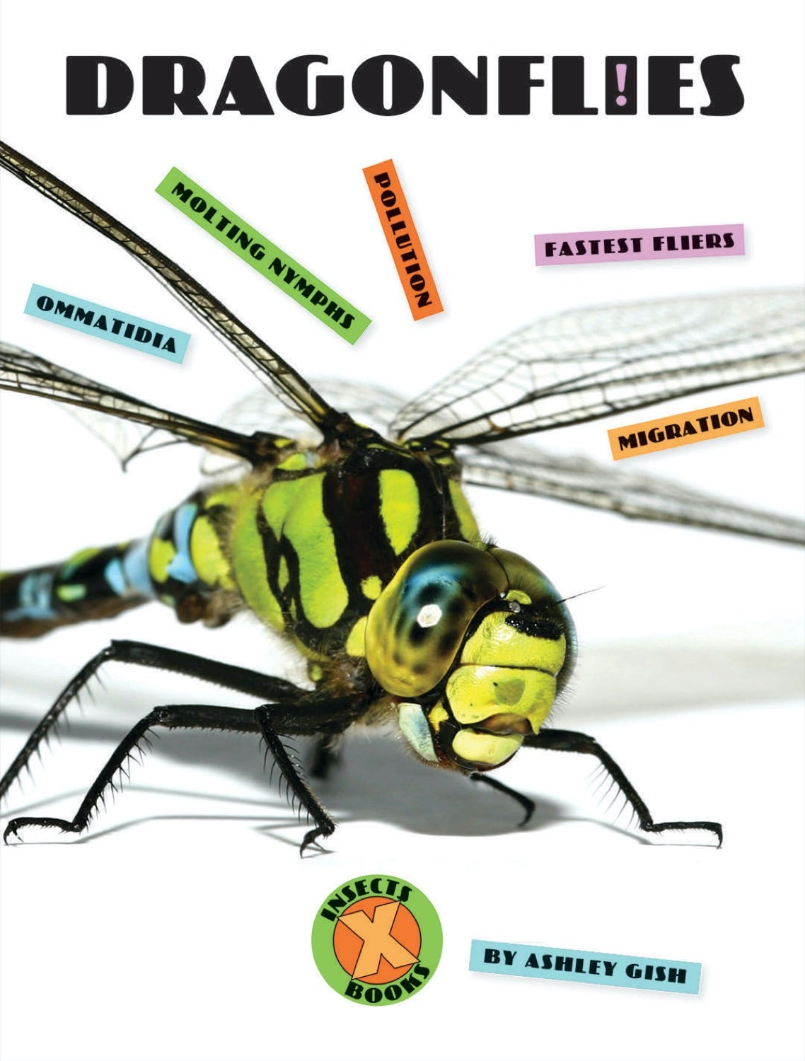 X-Books: Insects: Dragonflies