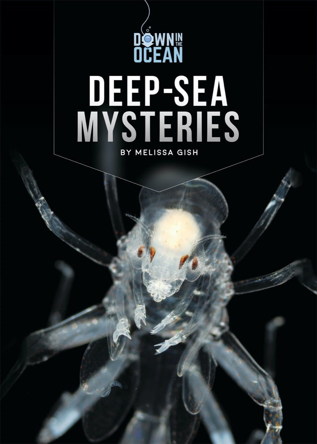 Down in the Ocean: Deep-Sea Mysteries