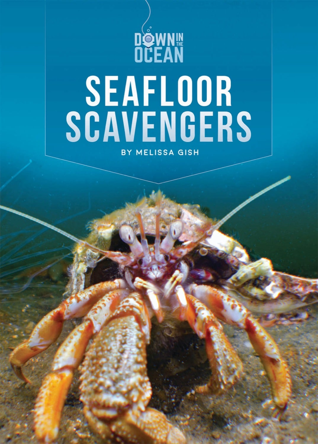 Down in the Ocean: Seafloor Scavengers