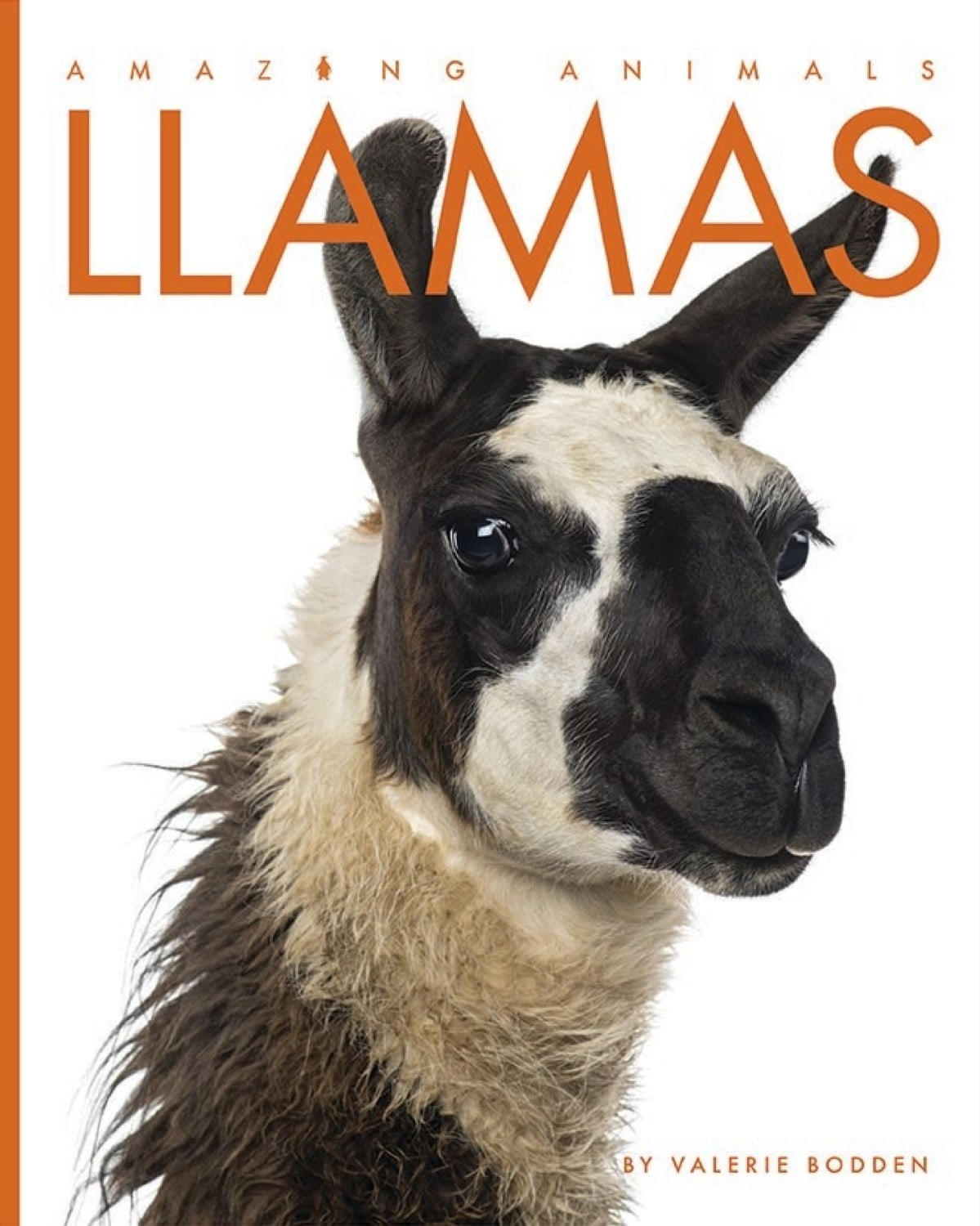 Amazing Animals: Llamas