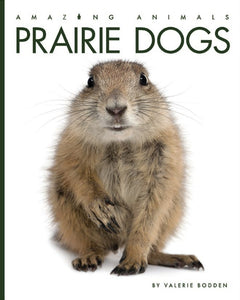 Amazing Animals: Prairie Dogs