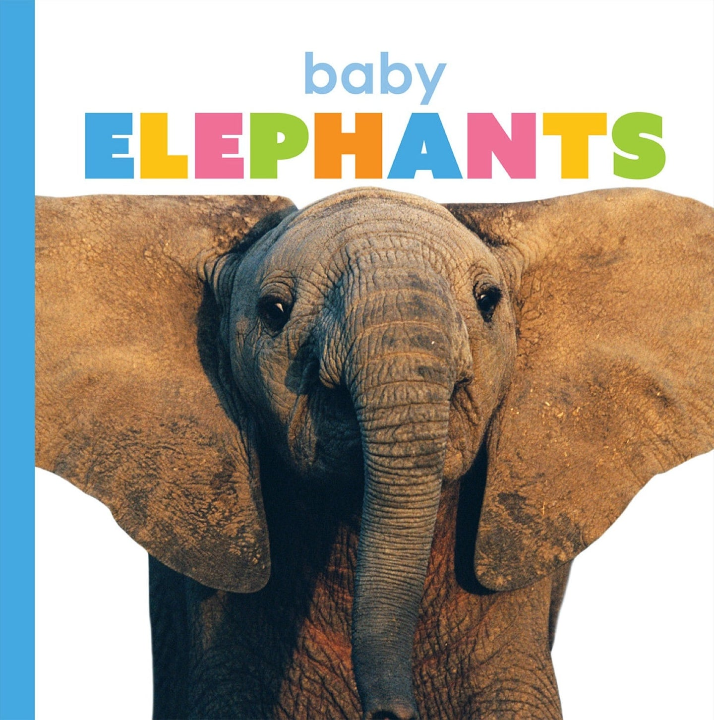 Starting Out: Baby Elephants